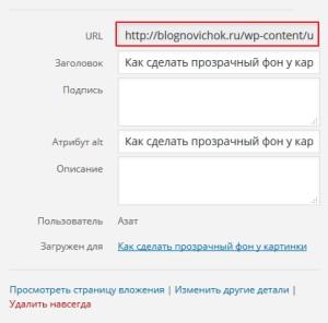 Создание ссылки на файл