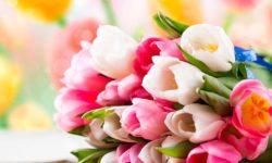 Что подарить девушке на 8 марта. Идеи оригинальных подарков