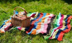 Что взять с собой на пикник из еды и вещей. Список необходимых принадлежностей для ночевки