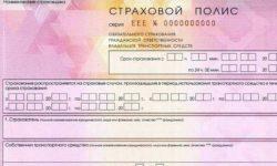 Как проверить страховой полис ОСАГО на подлинность по номеру договора, на сайте РСА