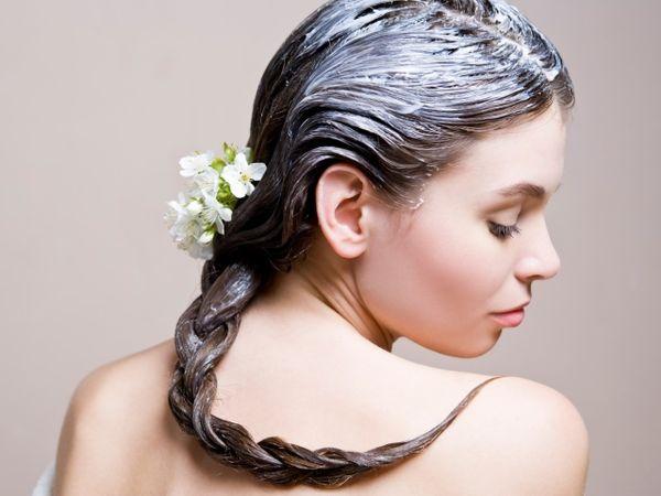 домашние шампуни для сухих волос