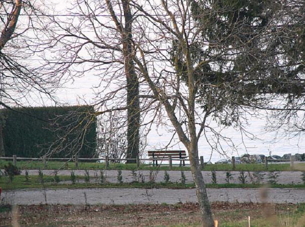дом прямо у Женевского озера
